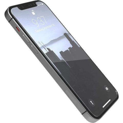 RAPTIC by X-Doria iPhone 12 Mini 5G Tempered Glass