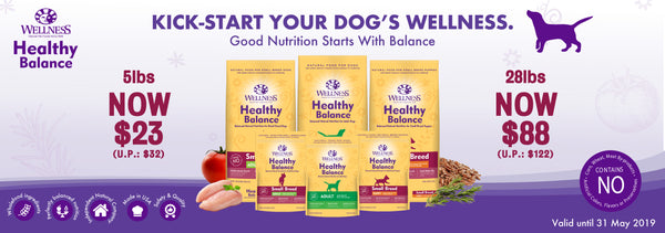 Wellness Healthy Balance Dog Food Promo
