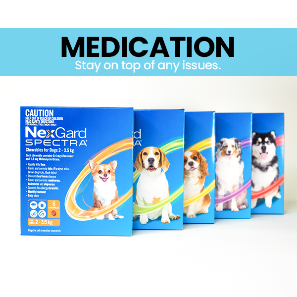 Pet Flea, Tick & Heartworm Prevention Products @ Singpet.Com