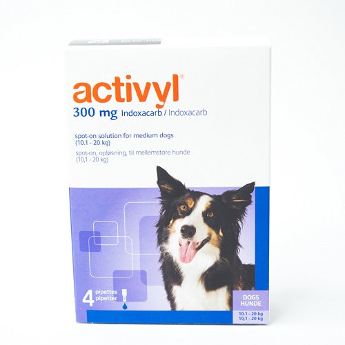 Activyl Spot-on 300mg For Medium Dogs 10-20 kg (23-44 lbs) | Singpet.Com