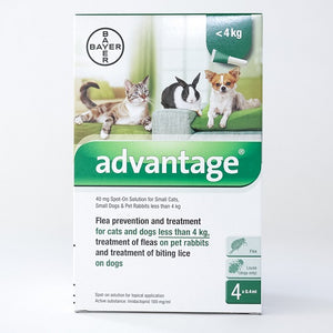 Bayer Advantage Spot-on For Cats, Kittens & Rabbits, 4 Pack | Singpet.Com.Sg