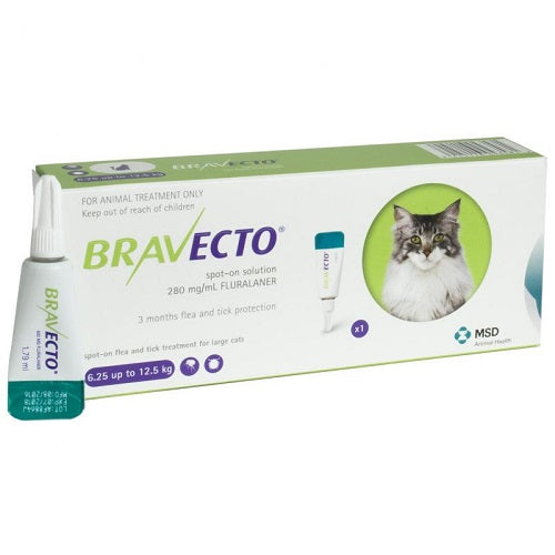 Bravecto 500mg Spot-On Solution For Large Cats 6.25-12.5 kg (13.8-27.5 lbs) | Singpet.Com