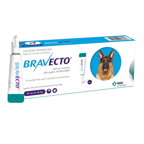 Bravecto Spot-On 1000mg for Large dogs >20–40 kg (44-88 lbs) | Singpet.Com.Sg