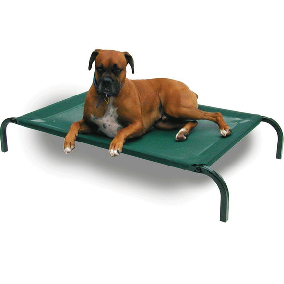 Coolaroo Cot Style Elevated Pet Bed For Dogs & Cats | Singpet.Com