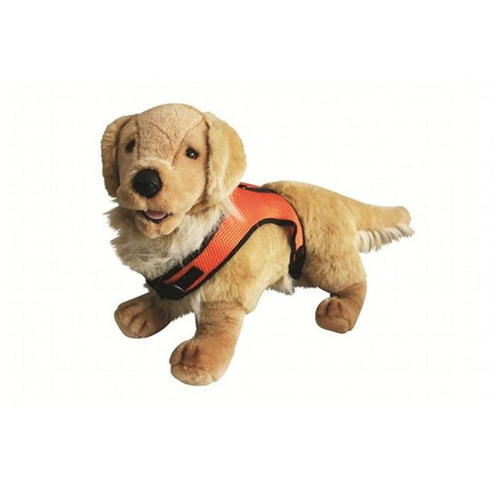 Prestige Cushionaire Dog Harness, Orange | Singpet.Com