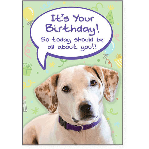 Dog Speak Birthday Card - All About You | Singpet.Com