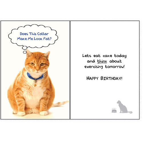 Dog Speak Birthday Card - Does This Collar... | Singpet.Com