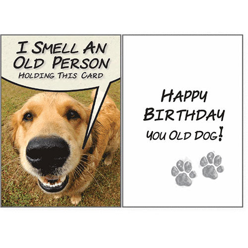 Dog Speak Birthday Card - I Smell An Old Person | Singpet.Com