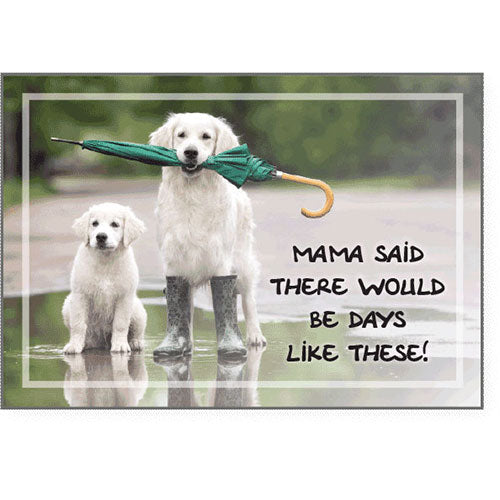 Dog Speak Coping Card - Mama Said There Would… | Singpet.Com