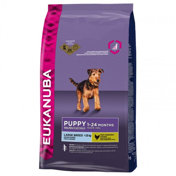 Eukanuba Puppy Dry Dog Food For Large Breed, Chicken | Singpet.COM