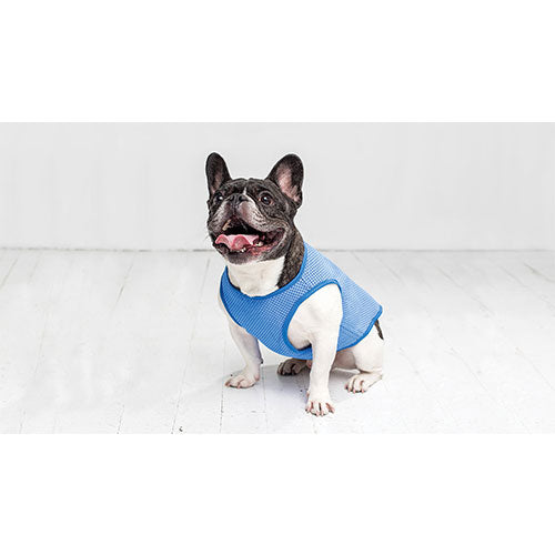 GF Pet Ice Vest Cooling Products For Dogs (Blue) | Singpet.COM