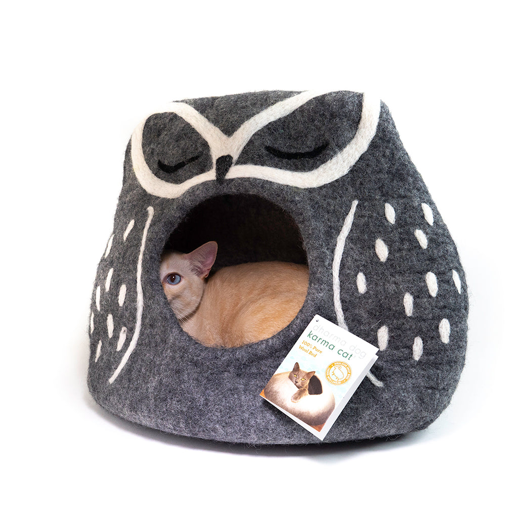 Dharma Dog Karma Cat Snowy Owl Cat Cave