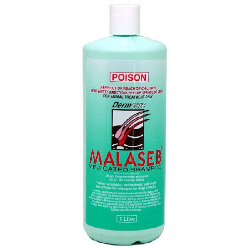 Dermcare Malaseb Medicated Shampoo For Dogs & Cats, 1 Litre | Singpet.COM