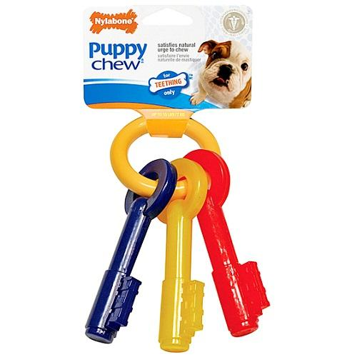 Nylabone Puppy Teething Keys, Small | Singpet.Com