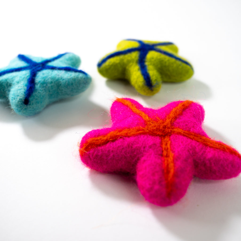 Dharma Dog Karma Cat Pack of 3 Starfish Toy For Cats