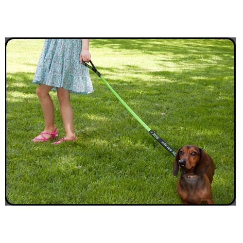 Rok Straps Dog Leash (Green)