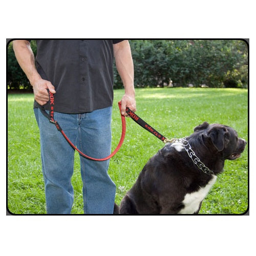 Rok Straps Dog Leash (Red)
