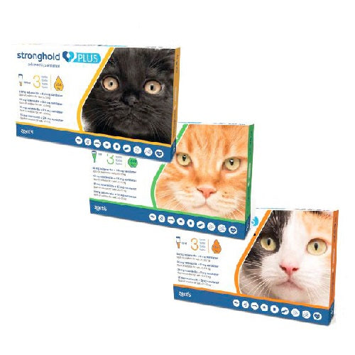 Stronghold Plus Spot-on For Cats & Kittens