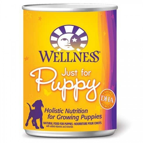 Wellness Complete Health Just for Puppy - Wet Canned Dog Food| Singpet.COM