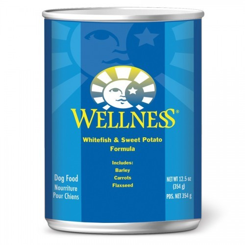 Wellness Complete Health Whitefish & Sweet Potato - Wet Canned Dog Food | Singpet.COM