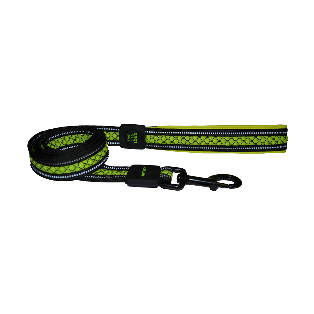 Scream Reflective Padded Leash Loud Green for Dogs | Singpet.Com