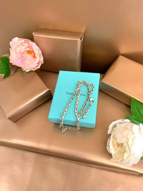 Tiffany & Co Sterling Silver Link Necklace (Retired)
