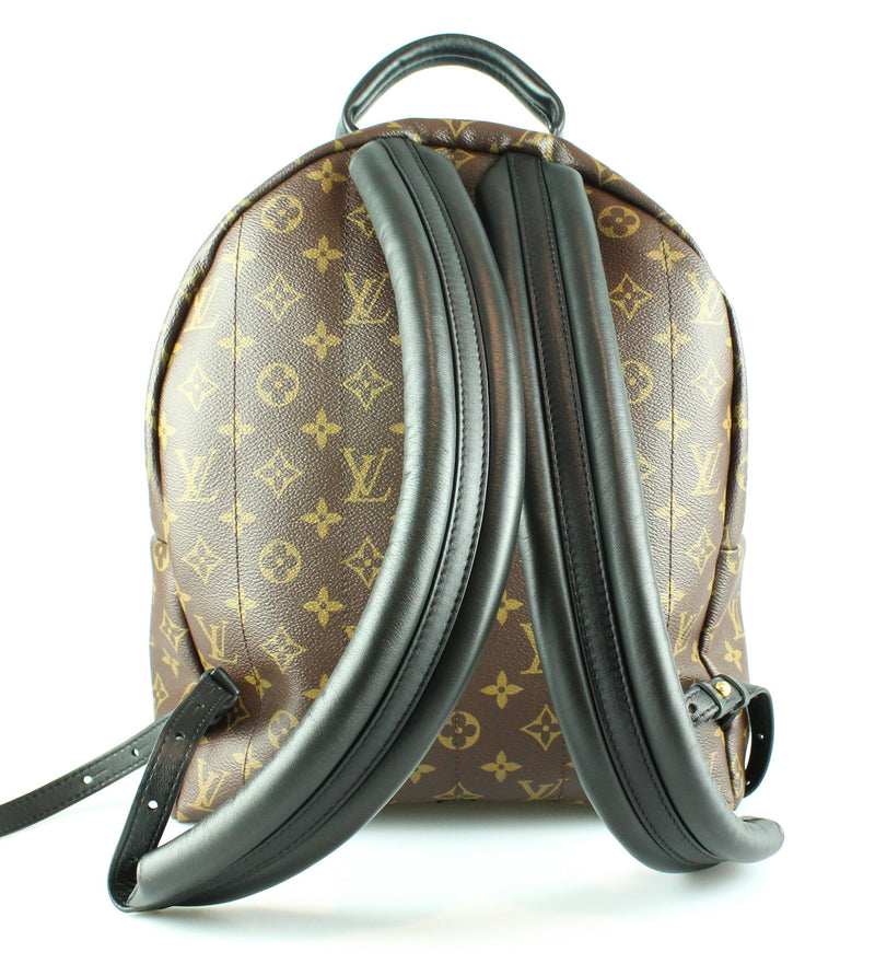 Louis Vuitton Palm Springs Monogram Backpack MM PL2157