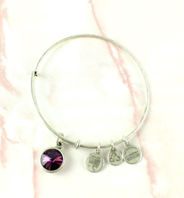 Alex And Ani Silver Metal Purple Gem Bangle