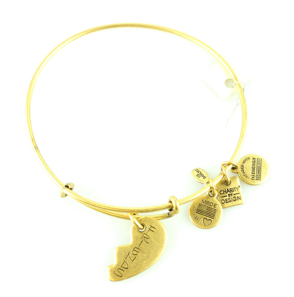 Alex And Ani Friends Bangle