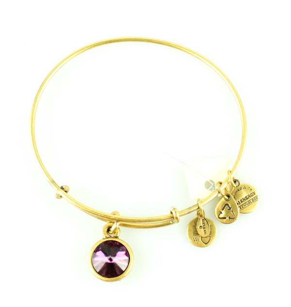 Alex And Ani Purple Stone Bangle