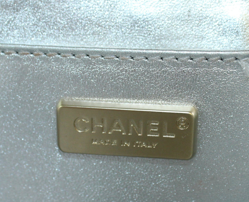 Chanel Metallic Lizard Print Silver Metal Frame Runway Press Sample Chain Bag