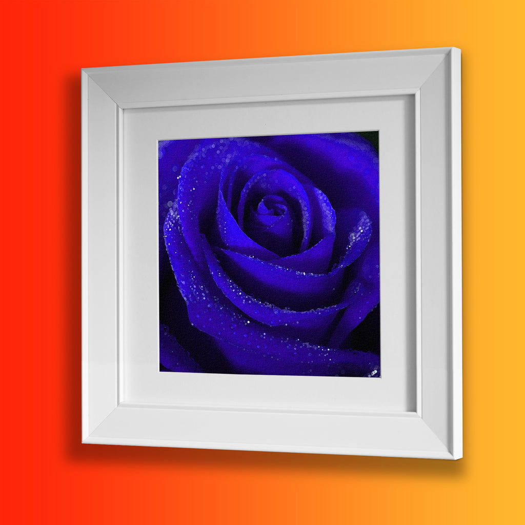 Blue Rose Framed Print