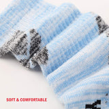 Women's Wicking Multi Performance Socks (5 Pairs - Color Tops)