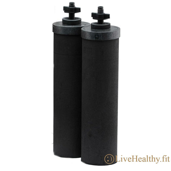 Black Berkey Purification Elements (2 Pack)