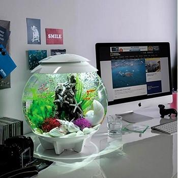 biOrb HALO 15 MultiColored Remote Aquarium