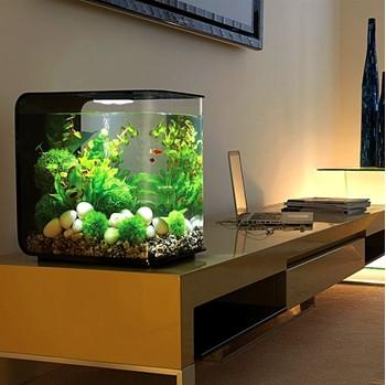 biOrb Flow 30 Aquarium with Standard LED Lighting