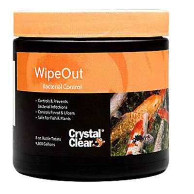 CRYSTAL CLEAR: WIPEOUT 8-OZ