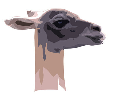 Stylised alpaca Head