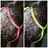SALE Equi- Flector Breastplate