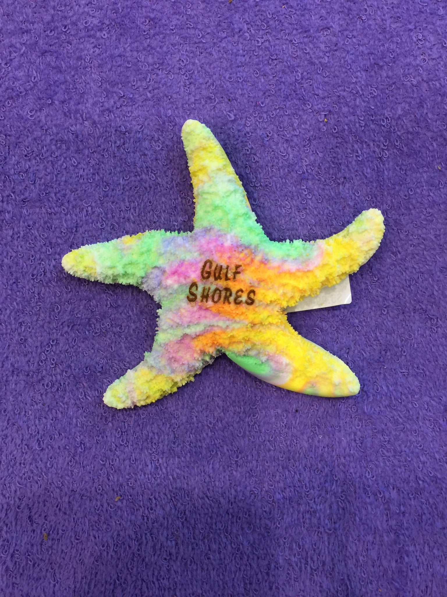 Clay Critter Large Starfish Magnet