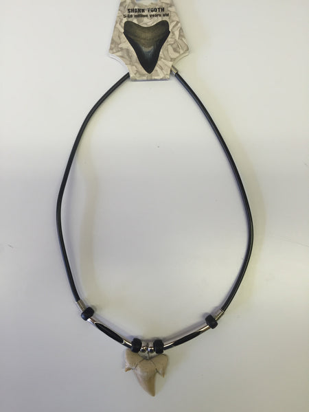 Split Tube Shark Tooth Necklace