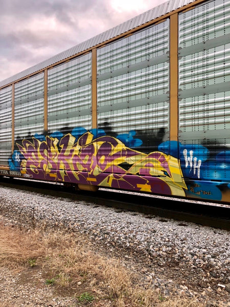 Eskae freight train graffiti art street art culture artist interview mtn94 spray paint vandal graff