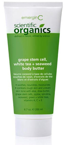 Grape Stem Cell, White Tea and Seaweed Body Butter