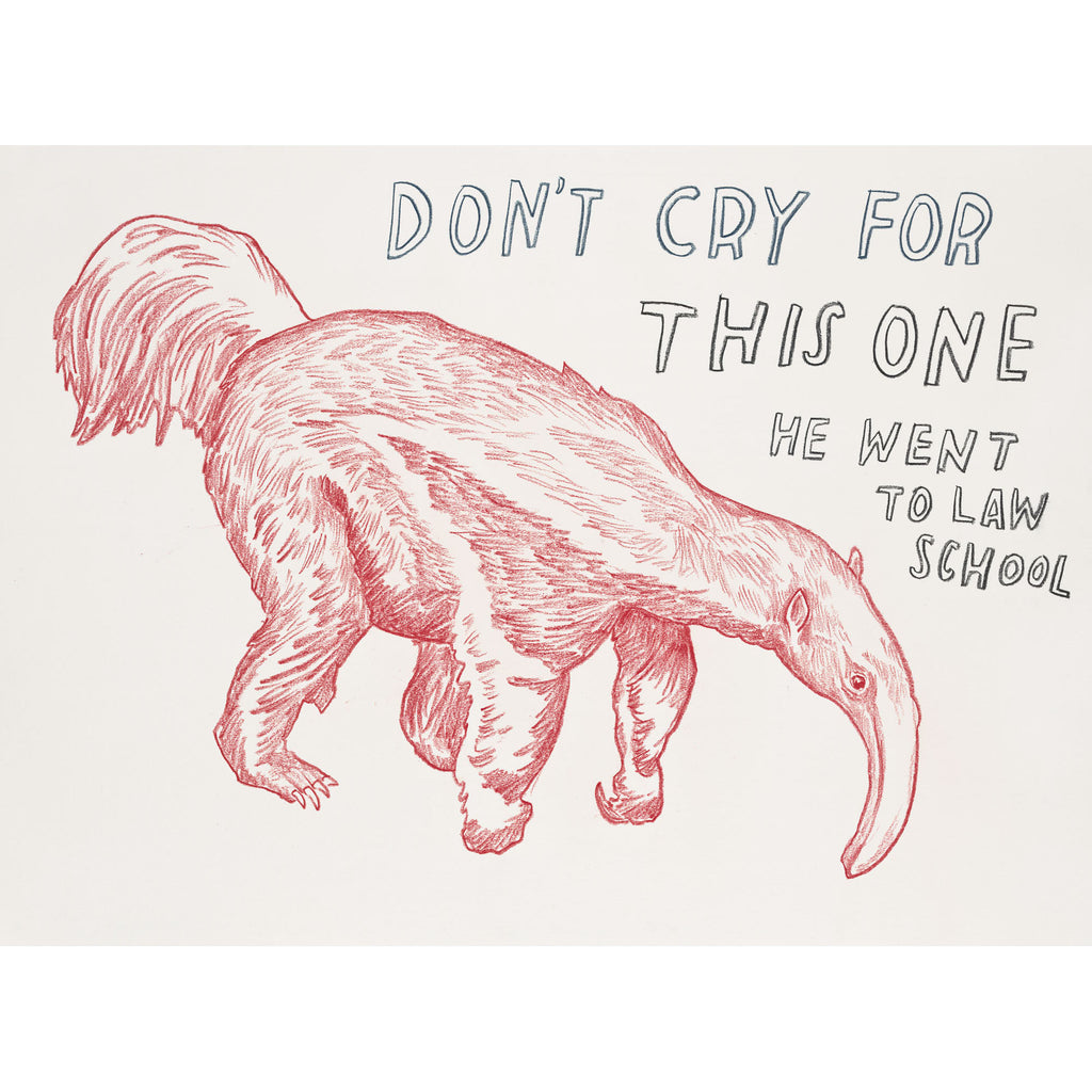 """Don't Cry For This One, He Went to Law School"" Silkscreen by Dave Eggers"