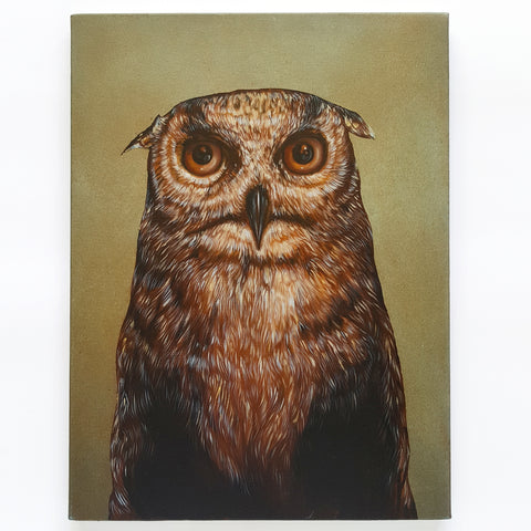 Owl by John Appleton