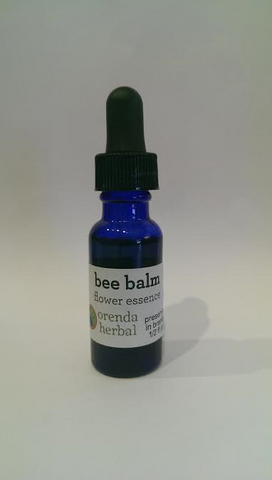 Bee Balm Flower Essence