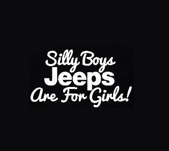 Silly Boys - Vinyl Decal