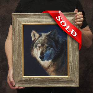 Wolf Portrait (oil on panel)