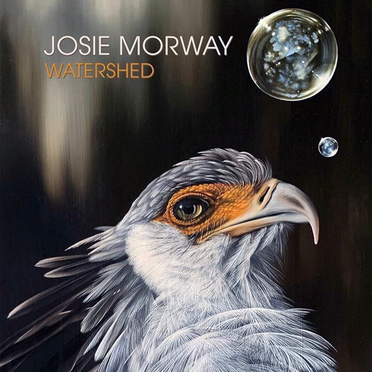 "Josie Morway's ""Watershed"" Solo Exhibit"
