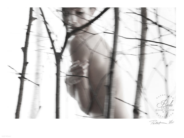 """Nude Birch"" by Red-Raven - Limited Edition, Archival Print"